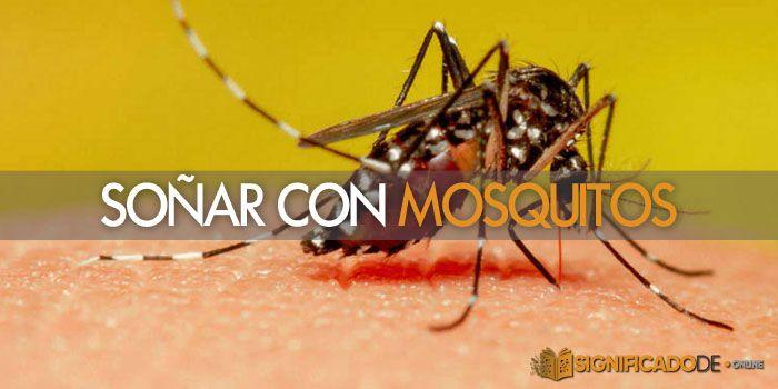 soñar con mosquitos