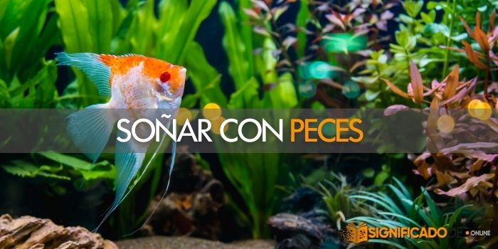 soñar con peces